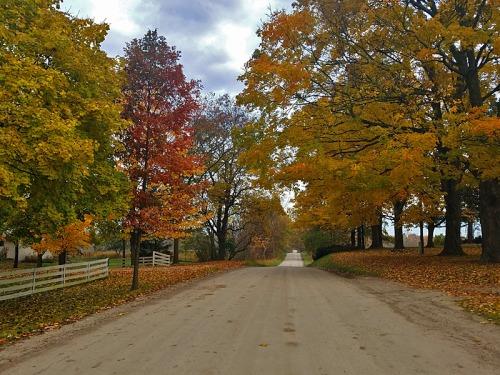 Random dirt road exploration in Washtenaw County, Michigan