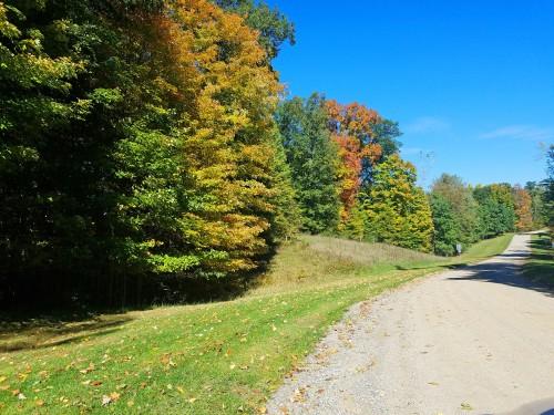 Huron Meadows Metropark, Brighton, Michigan fall foliage
