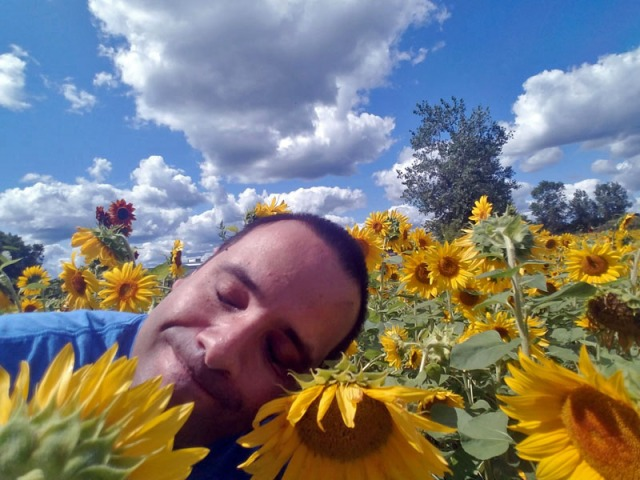 Taking in the sunflowers