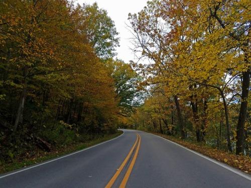 Autumn Road trip in Ann Arbor, Michigan