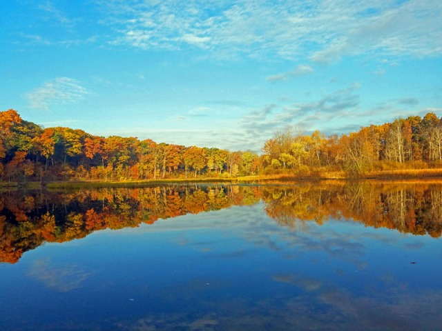 Fall In Ann Arbor along the Huron River