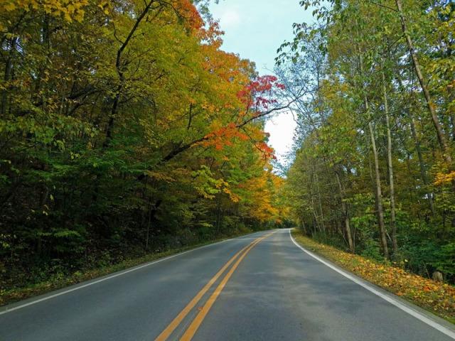 Fall In Ann Arbor along Huron River Drive