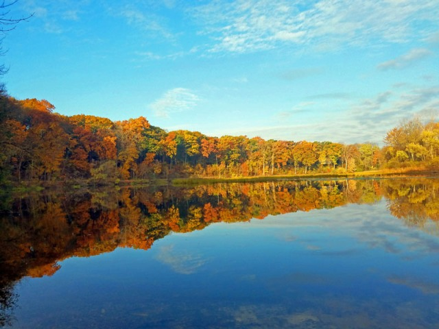 Fall In Ann Arbor along the Huron River