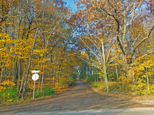 Ann Arbor Autumn along Huron River Drive